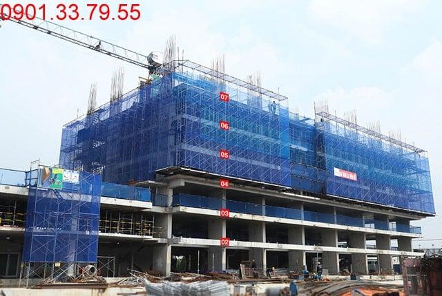 Thi công cột sàn tầng 8 block B Chung cư Lavita Garden