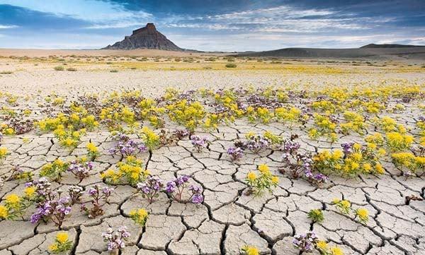 Bất động sản có phải là lĩnh vực khô khang khi viết content