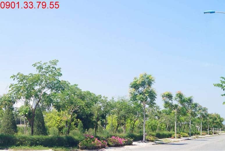 Công viên khu D17 Golden Bay Hưng Thịnh Bãi Dài