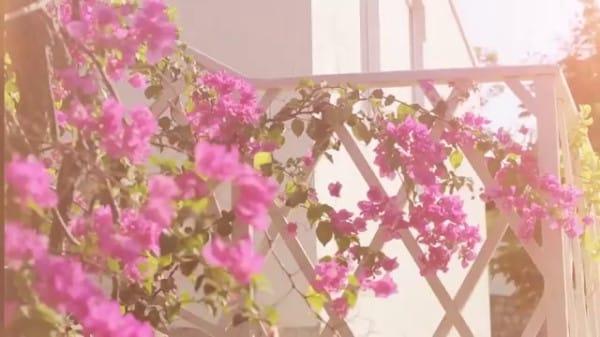 Can ho florita quan