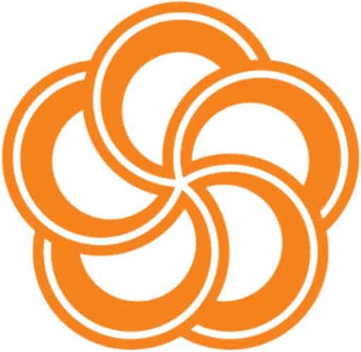 Ý nghĩa bông hoa mai trong logo Hưng Thịnh