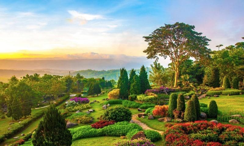 Khu vườn cổ tích Fairy Garden tại Coco Wonderland Resort