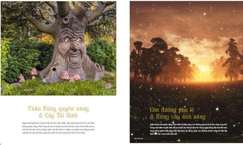 Thần rừng quyền năng & Cây tái sinh tại Coco Wonderland Resort