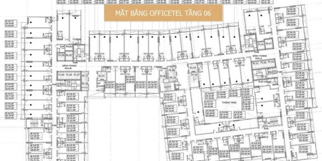mat bang officetel millennium
