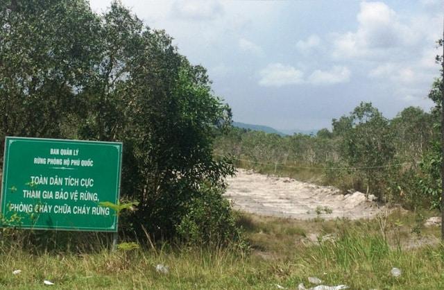 Không chỉ có hiện tượng phân lô, bán nền đất nông nghiệp mà còn có cả tình trạng lấn chiếm đất rừng