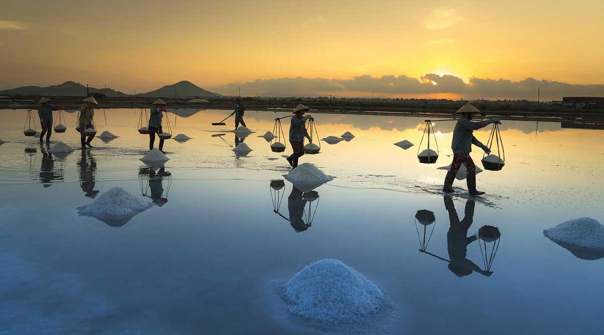 Ruộng muối thuộc nhóm đất nông nghiệp
