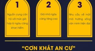 can khat can ho tai tp hcm