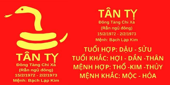 sinh nam 1972 tan ty hop huong nha nao