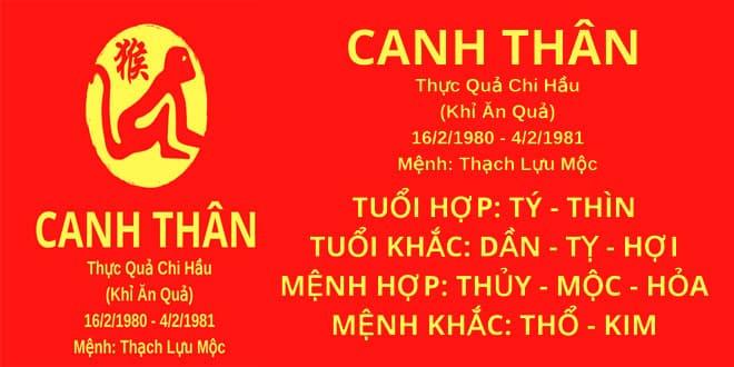 sinh nam 1980 canh than hop huong nha nao