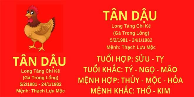 sinh nam 1981 tan dau hop huong nha nao