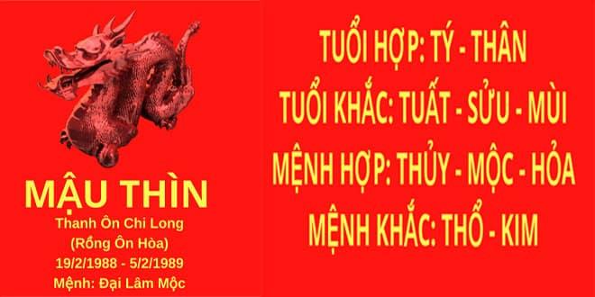 sinh nam 1988 mau thin hop huong nha nao