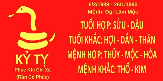 sinh nam 1989 ky ty hop huong nha nao