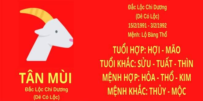 sinh nam 1991 tan mui hop huong nha nao