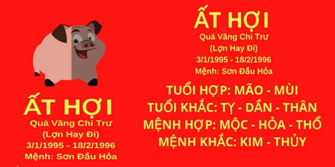 sinh nam 1995 at hoi hop huong nha nao