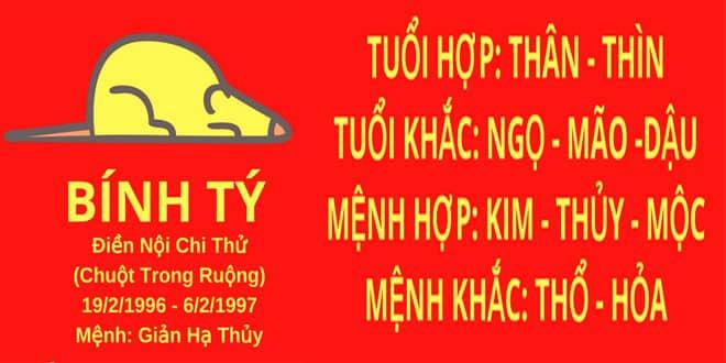 sinh nam 1996 binh ty hop huong nha nao
