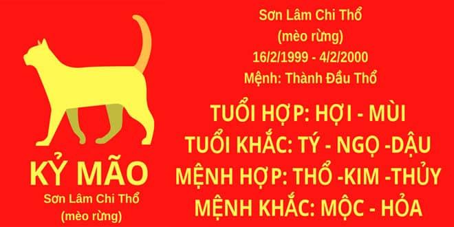 sinh nam 1999 ky mao hop huong nha nao
