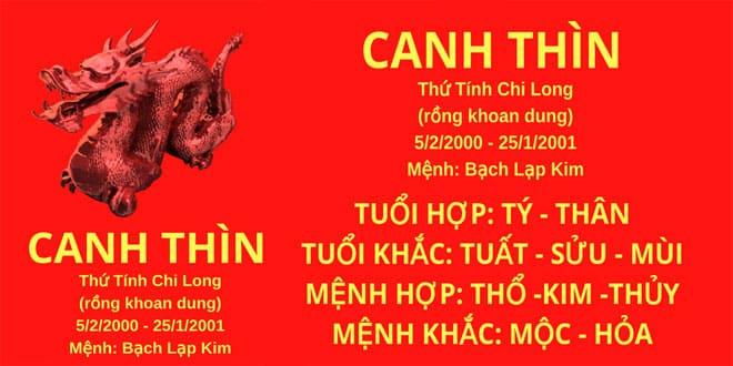 sinh nam 2000 canh thinh hop huong nha nao