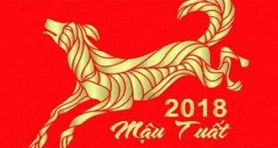 sinh nam 2018 mau tuat hop huong nha nao